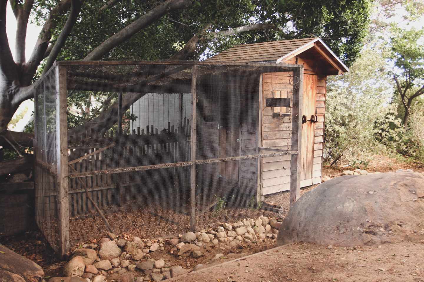 Hygge House Chick Coop in Topanga California