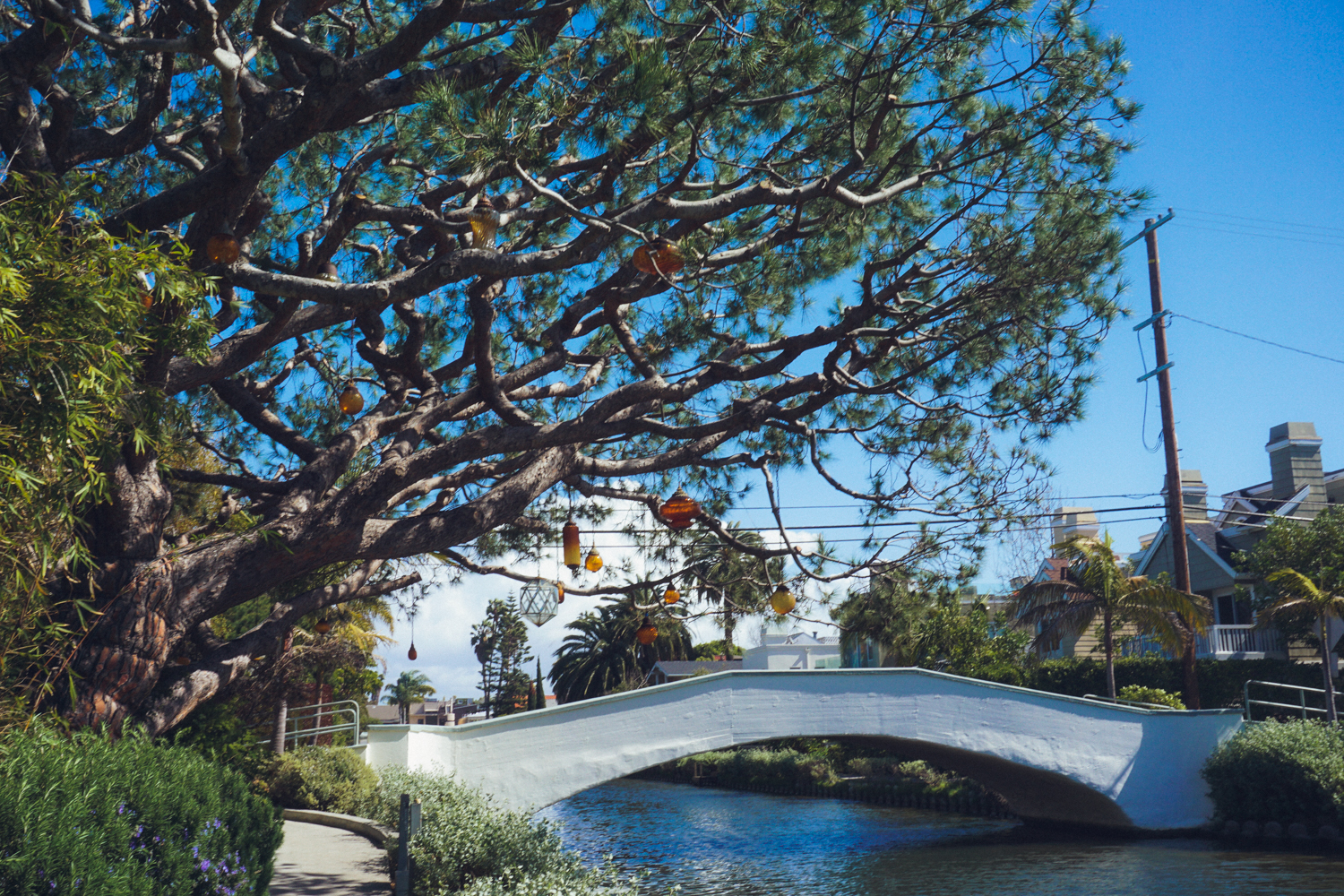 Venice Canals in California on Hygge House